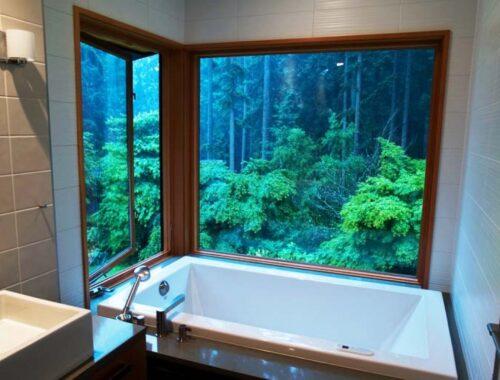ห้องน้ำกลางป่าพูด่าง